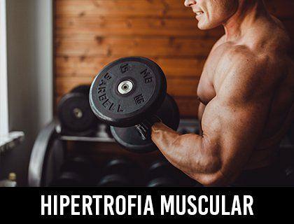 Hipertrofia Muscular